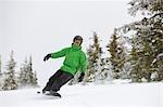 Snowboarder near Steamboat Springs, Colorado, USA