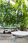 Tale und Stühle auf der Terrasse im freien