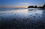 Sea Stack, Ruby Beach, Olympic National Park, Washington State, USA
