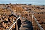 Walkway on Bartolome Island, Galapagos Islands, Ecuador