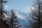 Weissmies und Fletschhorn Berg, Walliser Alpen, Wallis, Schweiz