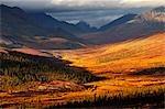 Gamme de pierre tombale, Tombstone Territorial Park, territoire du Yukon, Canada