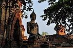 Wat Maha, Ayutthaya, Thaïlande
