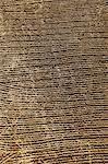 Gepflügter Felder am Westufer des Nil Ägypten