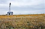 Windmill and Pumphouse on Abandoned Farm, Kansas, USA