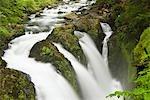 Rushing water in Sol Duc falls, Olympic National Park, Washington