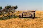 Point de Vista dans le sud de Sussex, Angleterre. Sièges vides dans un champ.