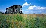 Old Tobacco barn, Vierraden. Exterior.