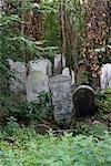 Grabsteine, Tower Hamlets Cemetery Park, London.