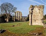 Abbaye de Croxden. Détail.