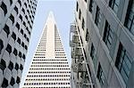 Vue d'angle faible de la Transamerica Pyramid, San Francisco, conçu par William Pereira