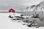 Maison à distance dans le paysage côtier, Skjelfjord, Flakstadoya, Loftofen, Norvège