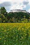 Hohensalzburg Castle and Rape Field, Salzburg, Austria