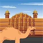 Chameau devant le palace, Hawa Mahal, Jaipur, Rajasthan, Inde