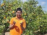 Boy in orange grove holding a cut orange