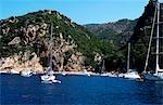 France, Corse, golfe de Porto-calanque de Piana.