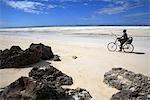 Tanzanie, Zanzibar (île d'Unguja), Pwani Mchangani beach, pêcheur.