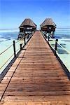 Tanzanie, Zanzibar (île d'Unguja), pier.