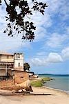 Tanzanie, Zanzibar (île d'Unguja), ville de Zanzibar, Stone Town, bord de mer.