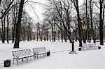 Russia, St Petersburg, garden of the castle Mikhailovski.