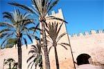 Espagne, îles Baléares, Majorque, Alcudia.
