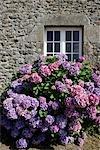 France, Brittany, Saint Malo, malouinière de la Chipaudière