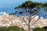 France, Provence, Saint Tropez