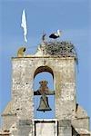 Portugal, Alentejo, Nova Santa de Bao, chapelle, nid de cigognes