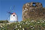 Portugal, Alentejo, Odemira, windmill