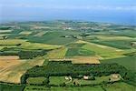 France, Pas-de-Calais, Cap Gris-Nez