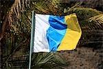 drapeau : îles Canaries