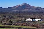 Espagne, Iles Canaries, Lanzarote, le paysage de La Geria