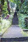 Indonesia, Bali, temple of Pura Luhur Batukaru, stairway to the temple