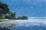 Indonésie, Bali, lac Bratan