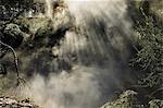 Sunrays through Steam at Hot Mud Pools, Kuirau Park, Rotorua, Bay of Plenty, North Island, New Zealand