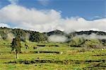 Terres agricoles, près de Matawai, Gisborne, North Island, Nouvelle-Zélande