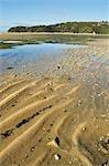 Sandy Bay, Marahau, Abel Tasman National Park, South Island, Nouvelle-Zélande