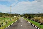 Haast Highway, near Jacobs River, West Coast, South Island, New Zealand