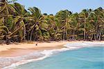 Plage près de Garret Point, petite île de maïs, maïs îles, Nicaragua, Amérique centrale