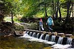 Marcheurs traversant les pierres de gué au-dessus d'un ruisseau en cascade dans Tollymore Forest Park, comté de Down, Ulster, Irlande du Nord, Royaume-Uni, Europe