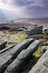Affleurements de granit Hayne Down, Parc National de Dartmoor, Devon, Angleterre, Royaume-Uni, Europe