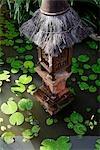 lumière au toit de chaume en étang de lilly