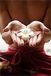 gros plan des mains tenant des fleurs