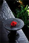 plat en bois avec hibiscus rouge