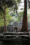 étapes menant aux ruines d'Angkor Wat