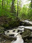 Beamer Falls Conservation Area, Grimsby, Ontario, Canada