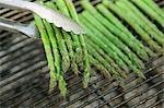 Asperges vertes sur un barbecue