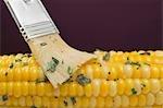 Brosser le maïs en épi avec beurre aux fines herbes