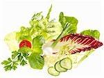 Verschiedene Salat Zutaten