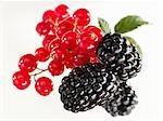 Redcurrants and blackberries